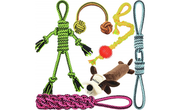 dog toy 6 pack