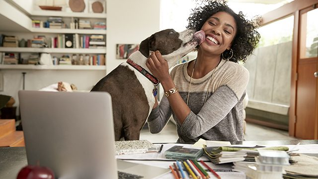 dog licks womans face at computer desk