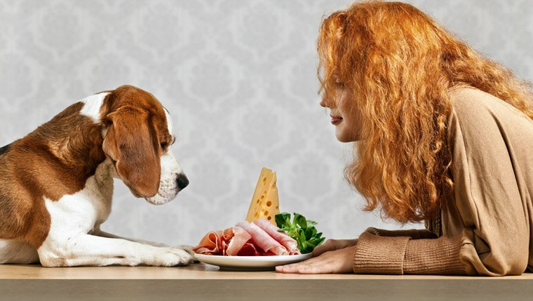Dog presented with ham by young woman