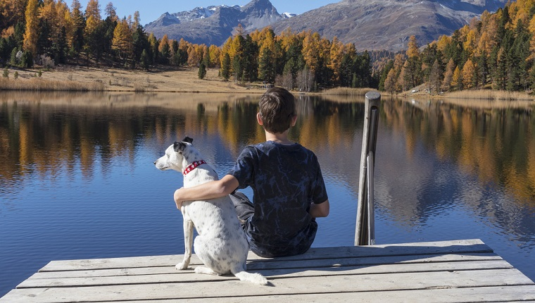 A child and a dog are looking at Lake Staz in Switzerland.