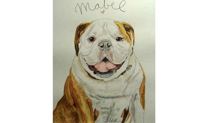 Gene's watercolor of a Bulldog named Mabel