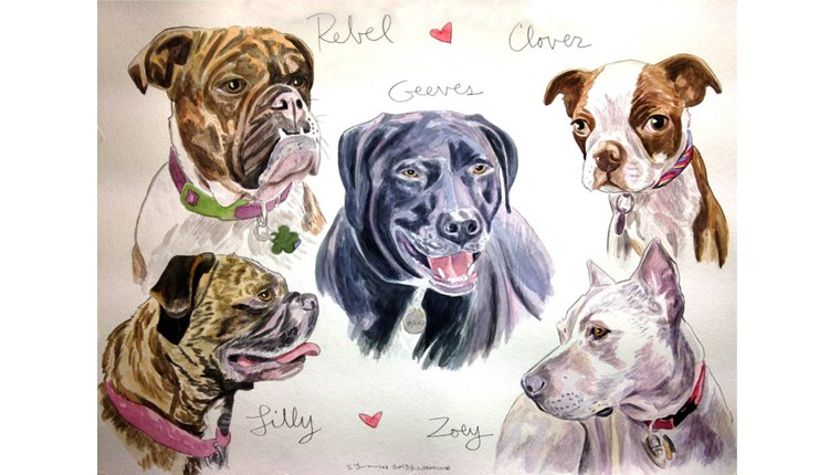 Watercolor paintings by Gene of several dogs
