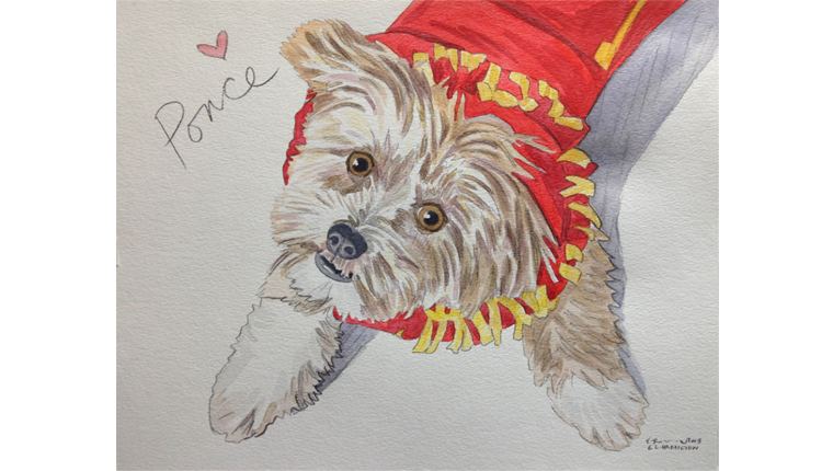 Gene's watercolor of a dog named Ponce