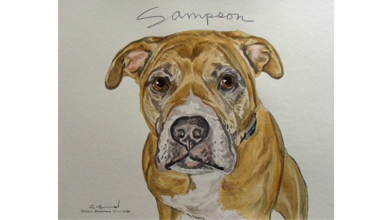 Gene's watercolor of a dog named Sampson