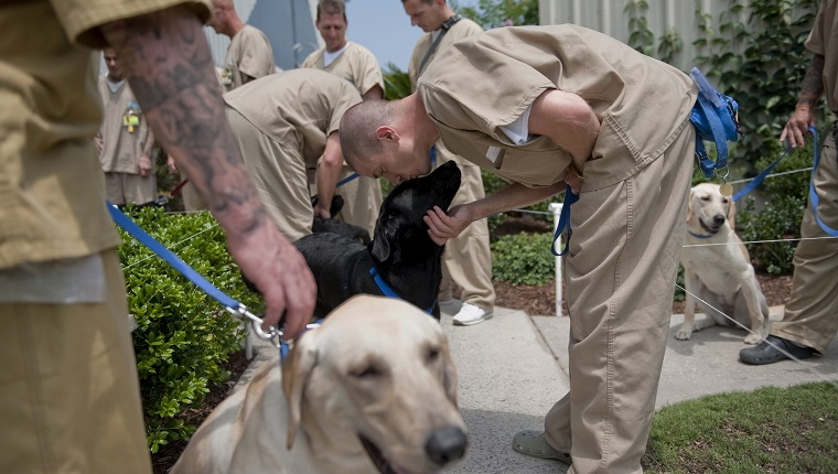 """UNITED STATES - JUNE 30: Inmates prepare to head back to their cells after training the dogs for the day. Training the dogs is akin to a full time job for the men, with a fixed schedule and routine happening everyday. The men must care for, exercise and feed the dogs - giving them a sense of responsibility for living creatures, or as the many of them noted, """"as if they were our kids."""""""