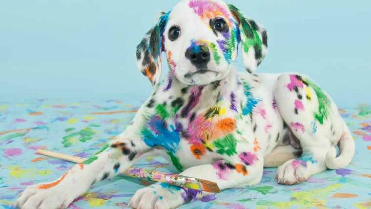 6 Of The Most Famous Dog Paintings Throughout History Dogtime