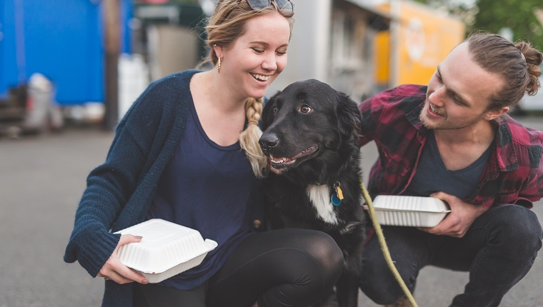 A hipster couple in their 20s get their food to go from a food cart. Their pet dog is very excited to eat also. They are crouched down with her and affectionately patting and hugging her.