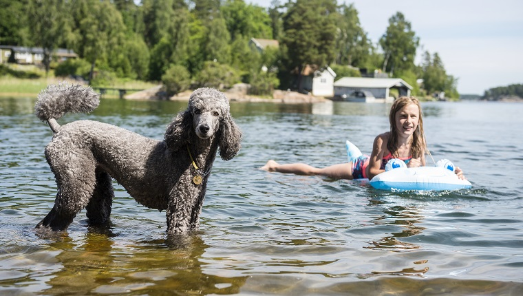 Smiling girl in lake with dog