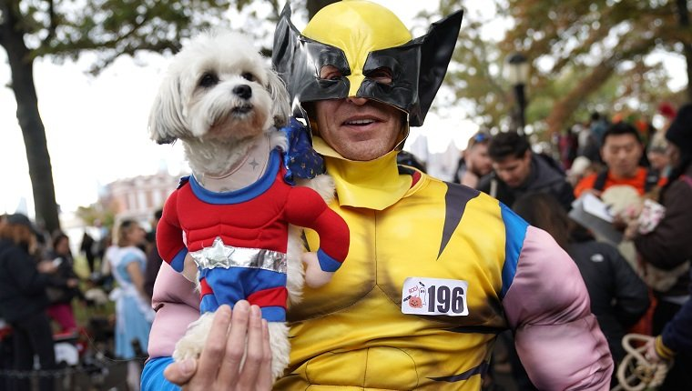 A dog and owner are seen in x-men costume during the 28th Annual Tompkins Square Halloween Dog Parade at the East River Park Amphitheatre in New York on October 27, 2018. (Photo by TIMOTHY A. CLARY / AFP)