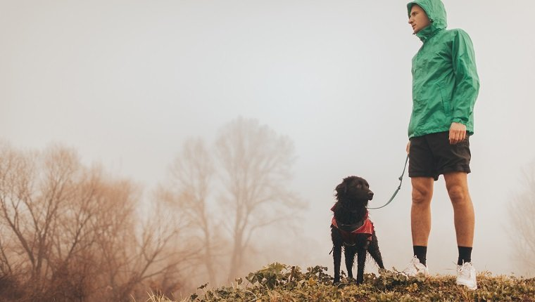 Photo of active young man and his dog in a morning walk