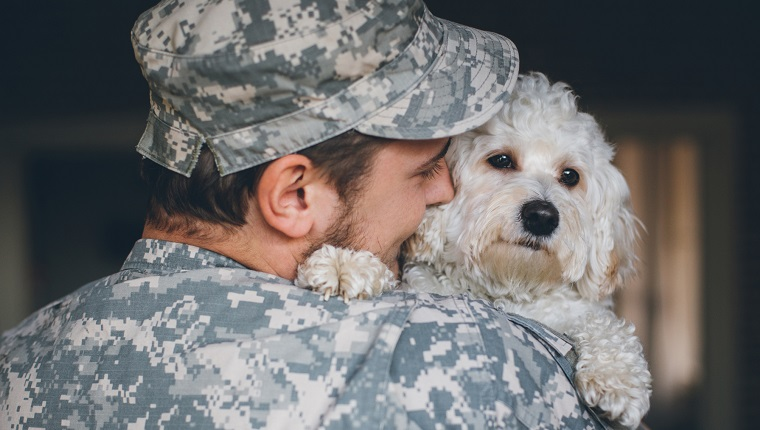 Soldier greeting his cute white dog after long time.