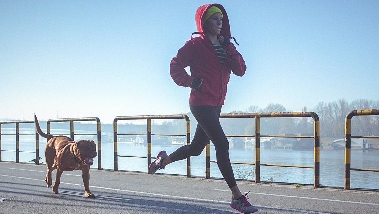Young fit woman accompanied with her dog, running and listening to music on the riverbank in the city. The woman wears black running tights, yellow hat and red jacket. She has a smart phone mounted on her arm, with earphones connected to it. Her body is in motion, slightly above the ground. The copy space has been left. Shallow DOF.
