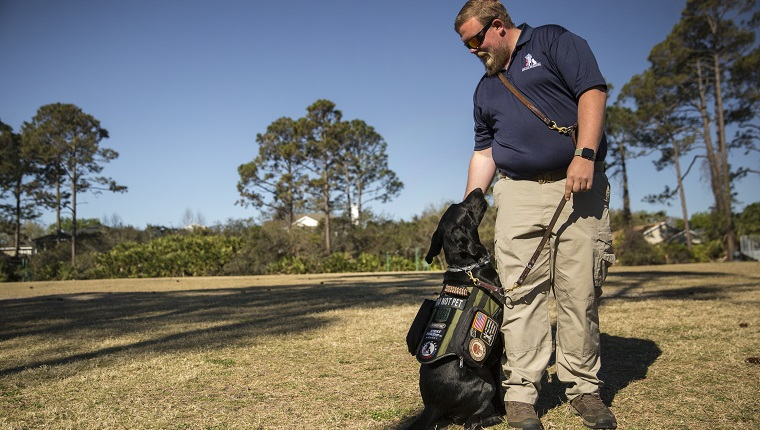 """PONTE VEDRA, FL - MARCH 15: Adam Fuller and his dog JD demonstrate the """"cover"""" command for the class. The command brings the dog to the owner's side and looking behind them to protect the person when they have their back turned to a group of strangers. Fuller helps teach as part of the K9s for Warriors program, a graduate of the program in January, he is training to be a full time instructor with the organization."""