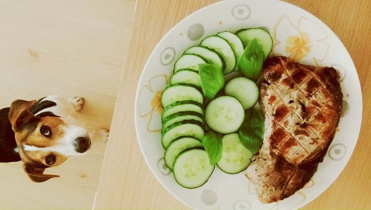 Directly Above Shot Of Grilled Meat With Cucumber