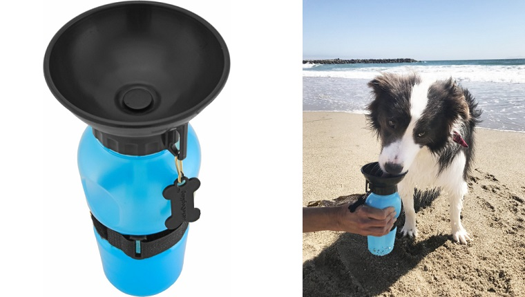 water bottle for dogs