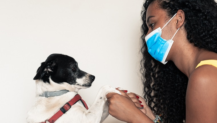 Girl going out with her dog, with all prevention. Young girl worries about coronavirus.Time to go out with her pet, with mask. Covid 19 concept. Image