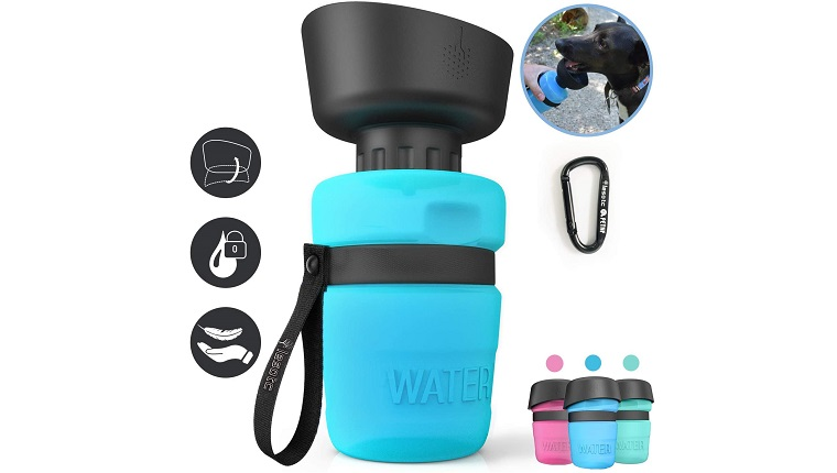 lesotc water bottle