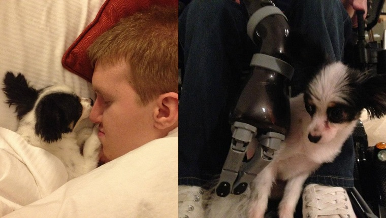 Left: Kevin and Piper snuggle together. Right: Piper looks skeptical about robotic arm assistive technology.