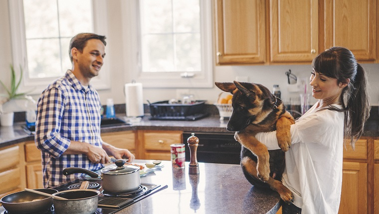 Couple in the kitchen cooking together . Women holding their dog in hands and he looking at food