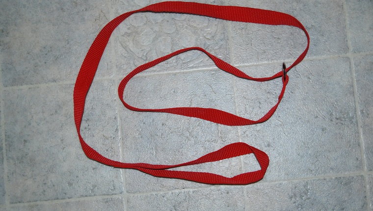 Red slip lead/leash for use on dogs and cats