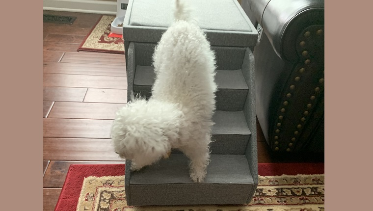 Figuring out the stairs