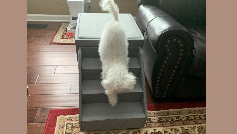 Leia descending the stairs like it's NBD