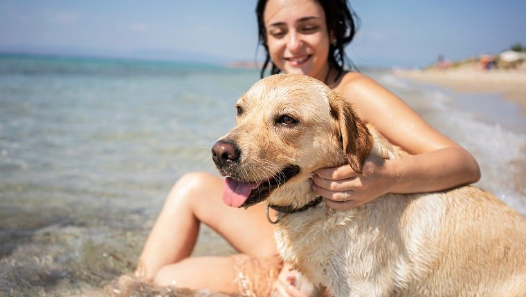 Young woman having fun with her dog at the beach