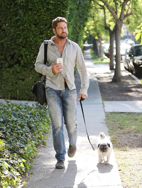 Gerard Butler Goes For A Stroll With Lolita The Pug