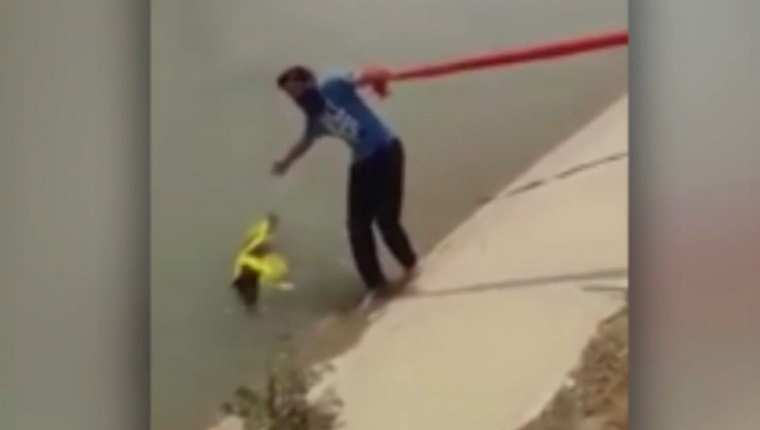 Sikh Man Saves Drowning Dog With Turban