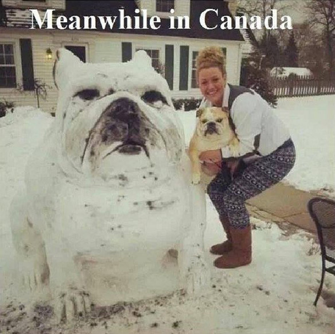 Meanwhile in Canada!