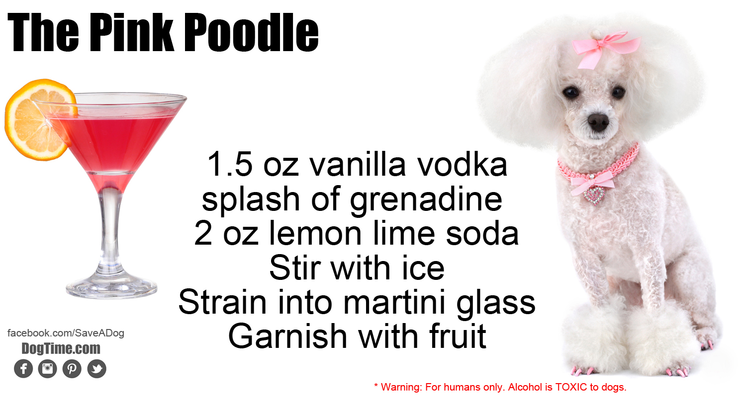 Pink Poodle Cocktail Recipe