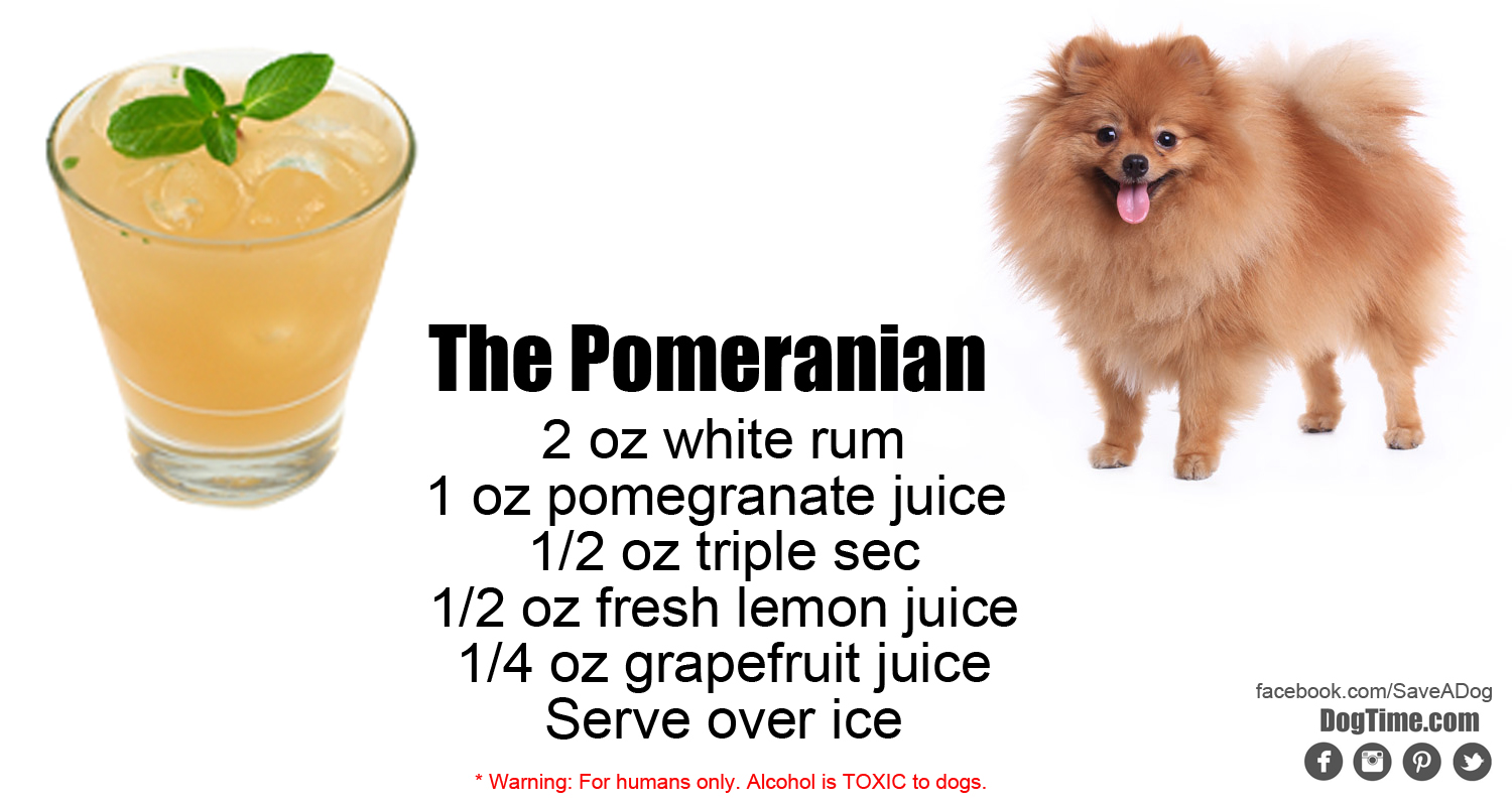 Pomeranian Cocktail Recipe