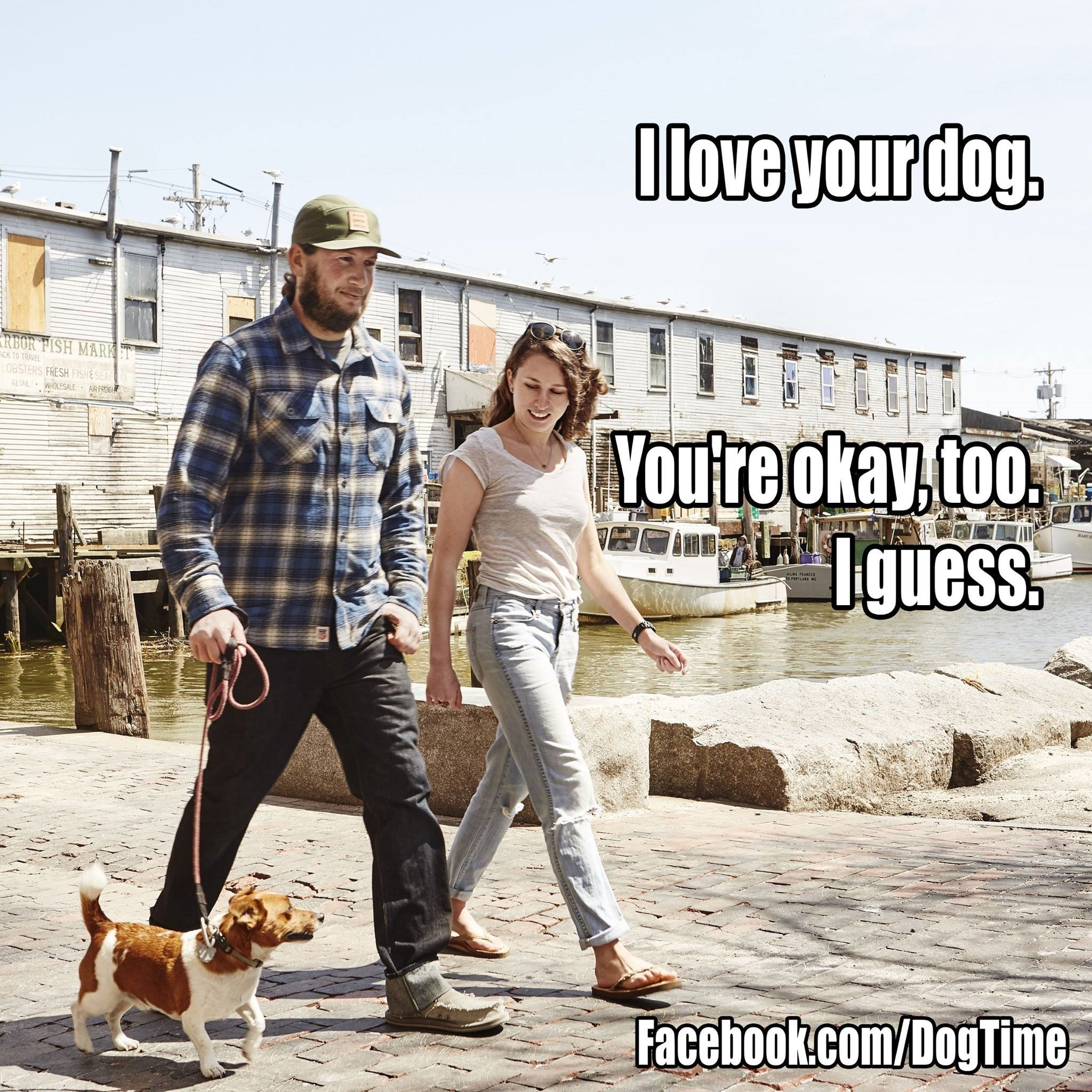 I Love Your Dog