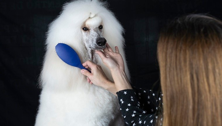 Fur Grooming Accessories